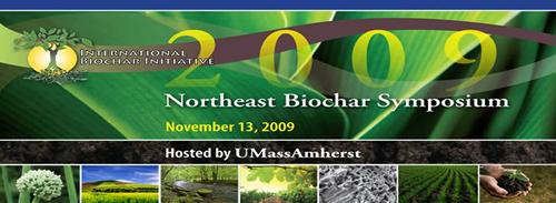 IBI NE Biochar Symposium 2009