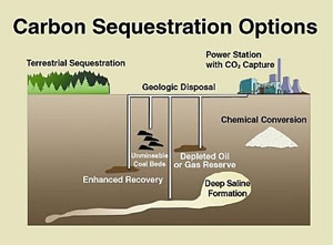 carbon sequestration options